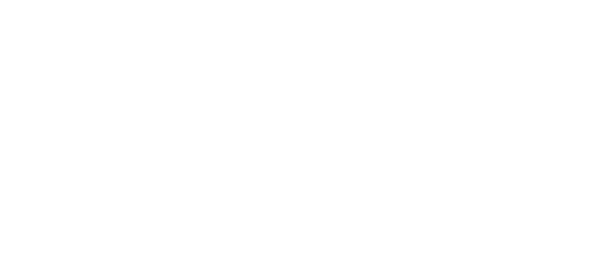 Best MT4 Indicators Logo White